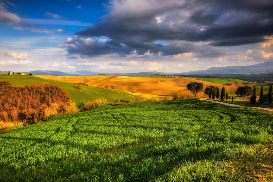 Italy Scenery Fields Sky Clouds Grass Tuscany Nature wallpaper