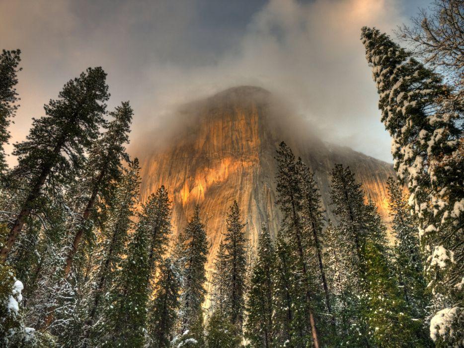 USA Parks Mountains Winter Yosemite California Fir Nature wallpaper