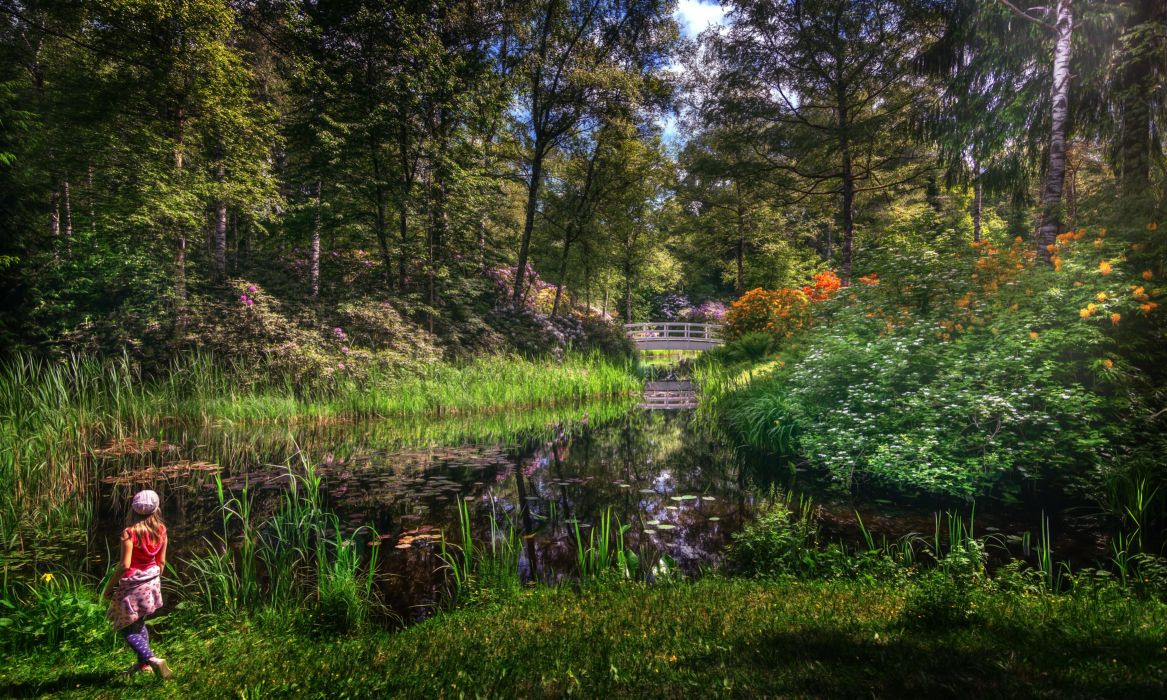 Parks Pond Bridges Trees Shrubs Nature wallpaper