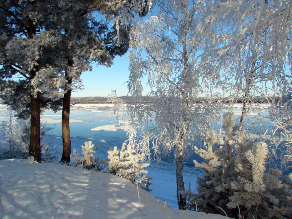 Russia Winter Rivers Trees Snow Fir Nature wallpaper