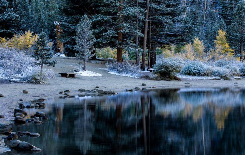 Parks Winter Coast Stones Trees Shrubs Nature wallpaper