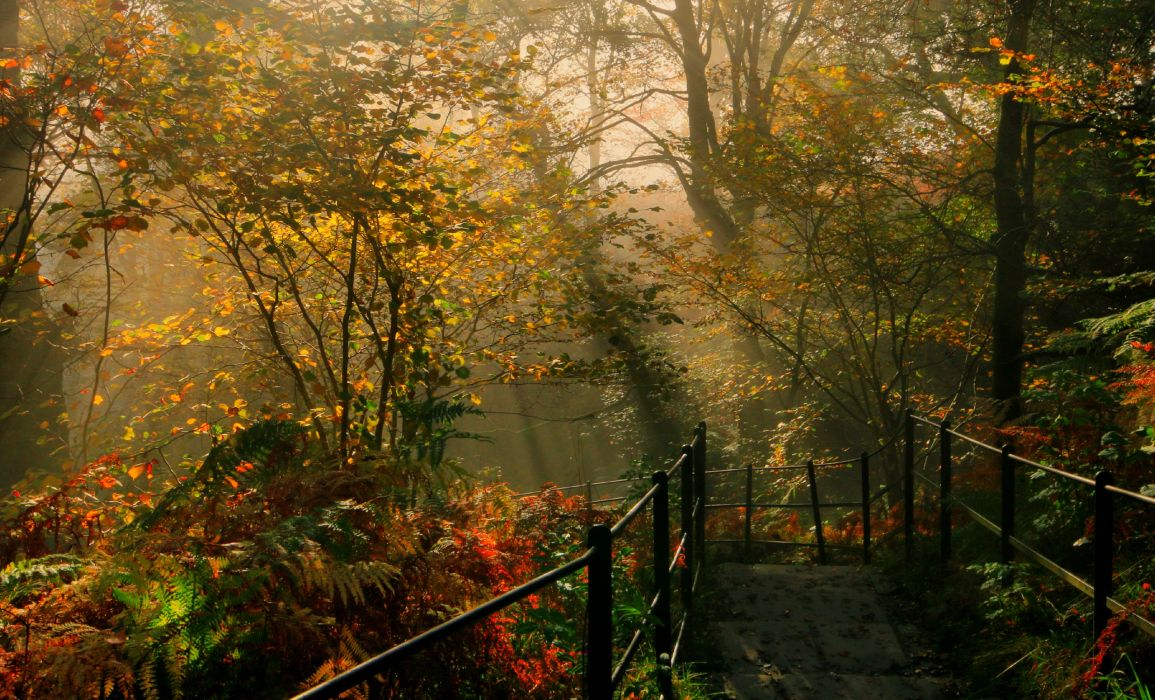 England Parks Autumn Trees Fence Dockray Nature wallpaper