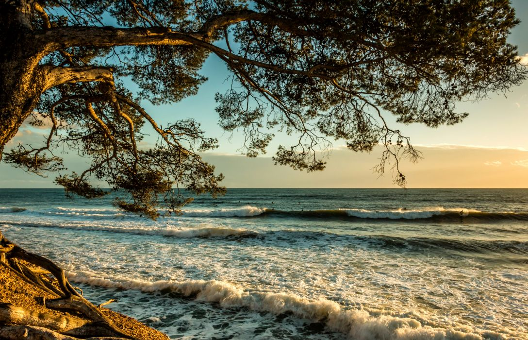 France Waves Sea Branches Liouquet Natur wallpaper