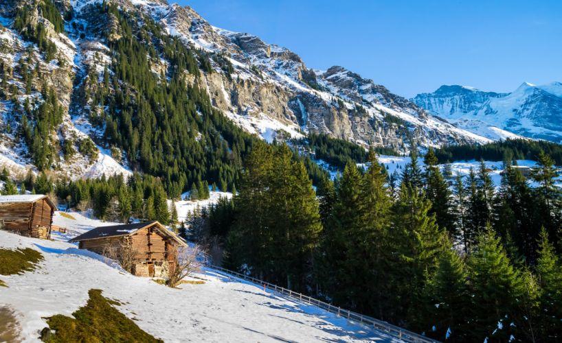 Switzerland Mountains Winter Alps Fir Snow Nature wallpaper