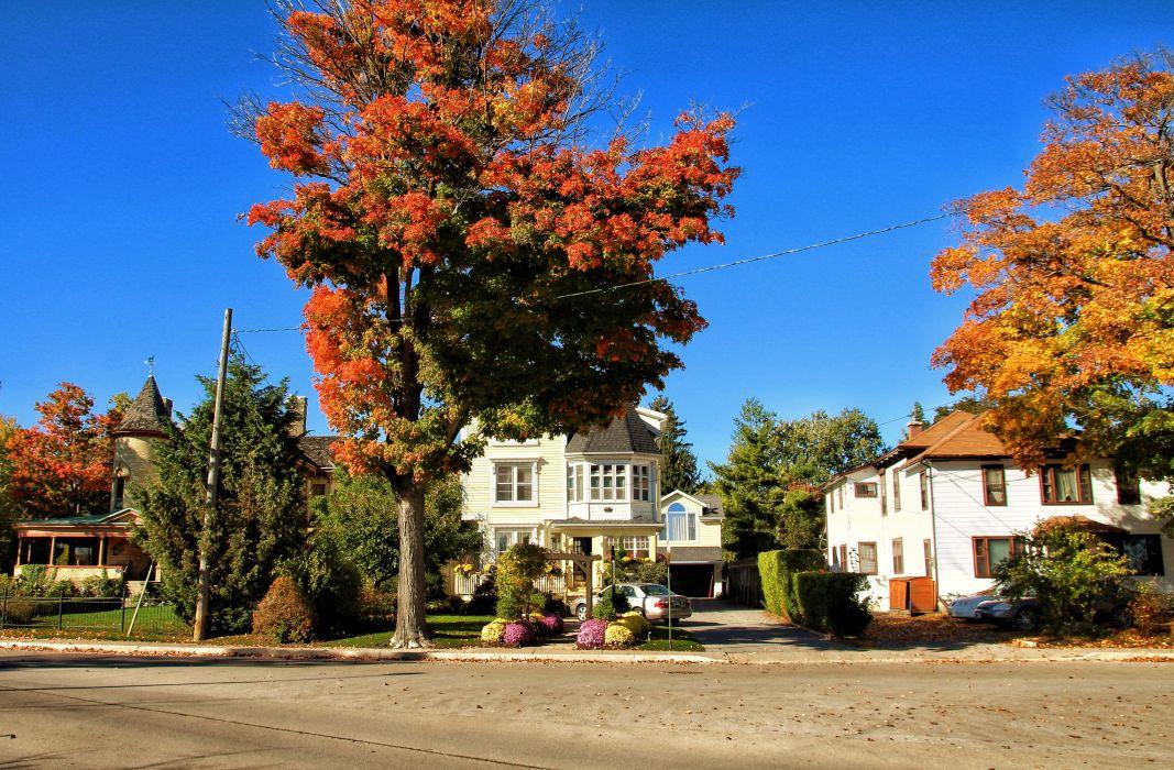 Canada Street Trees Shrubs Niagara Falls Ontario Cities wallpaper