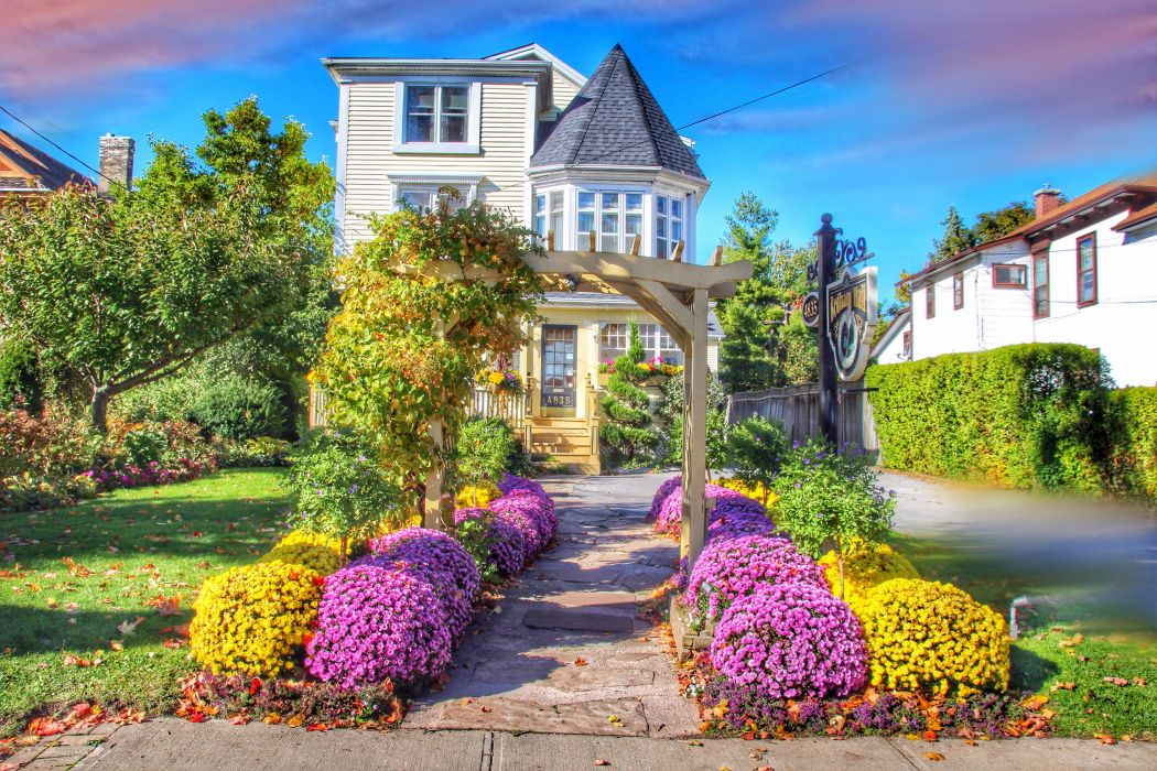 Canada Houses Chrysanthemums Shrubs Niagara Falls Ontario Cities wallpaper