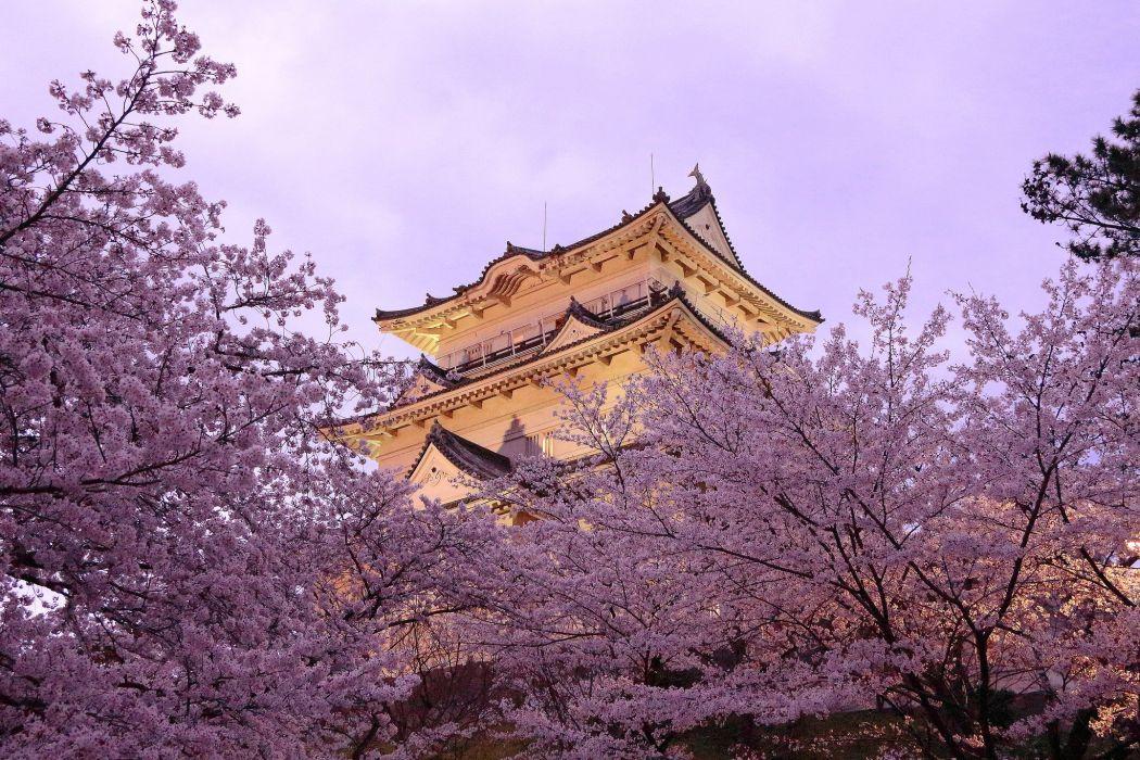 Pagoda Japan Spring Sakura Cities wallpaper
