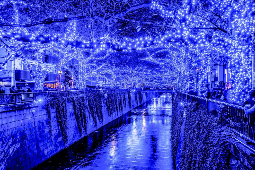 Tokyo Japan Fairy lights Canal Night Branches Cities wallpaper