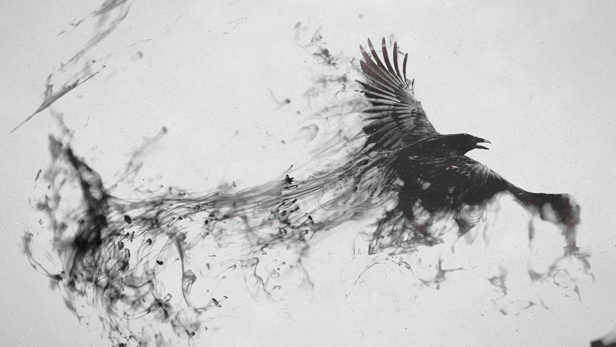 Raven Bird Flying Smoke Black White Wallpaper