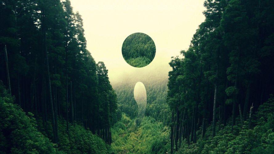 dark abstracto bosque luna wallpaper