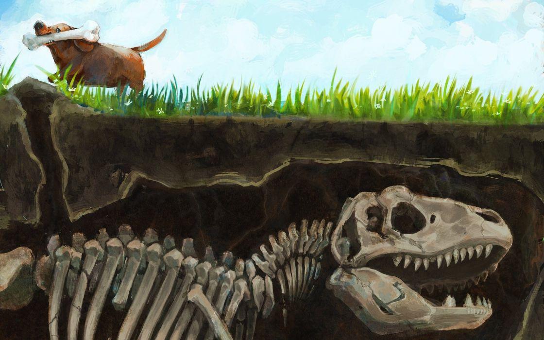 abstracto humor perro hueso dinosaurio wallpaper