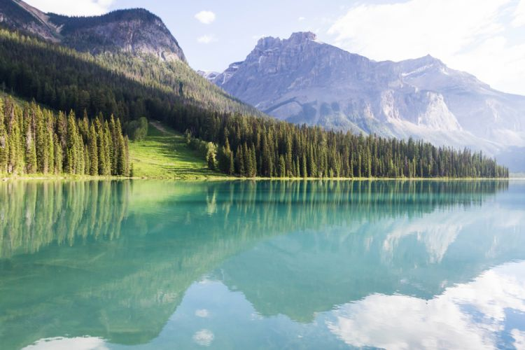 mountains landscape trees lake peyto wallpaper