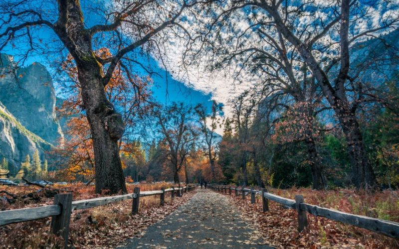 beautiful nature road fence autumn foliage mountains wallpaper