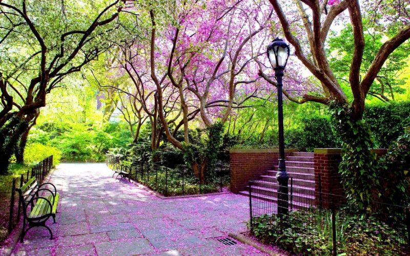 park garden bench lamp spring flowering tile brightly shadows wallpaper