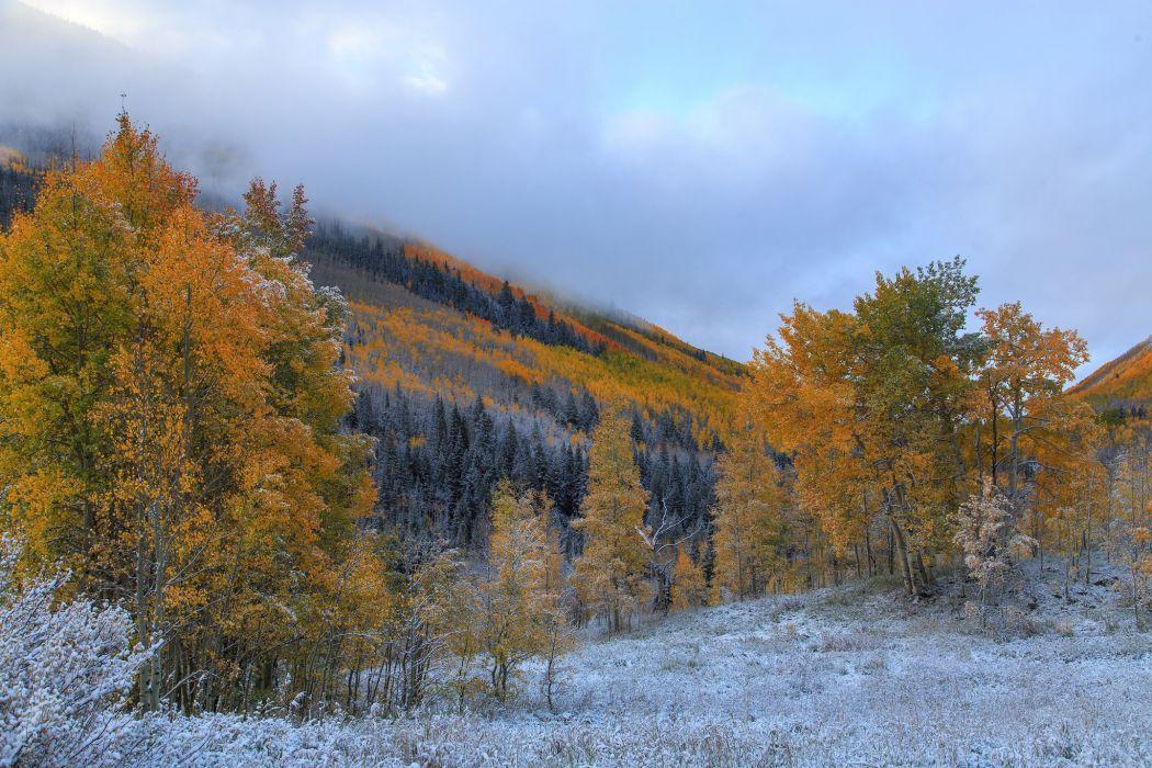 trees mountains frost autumn wallpaper