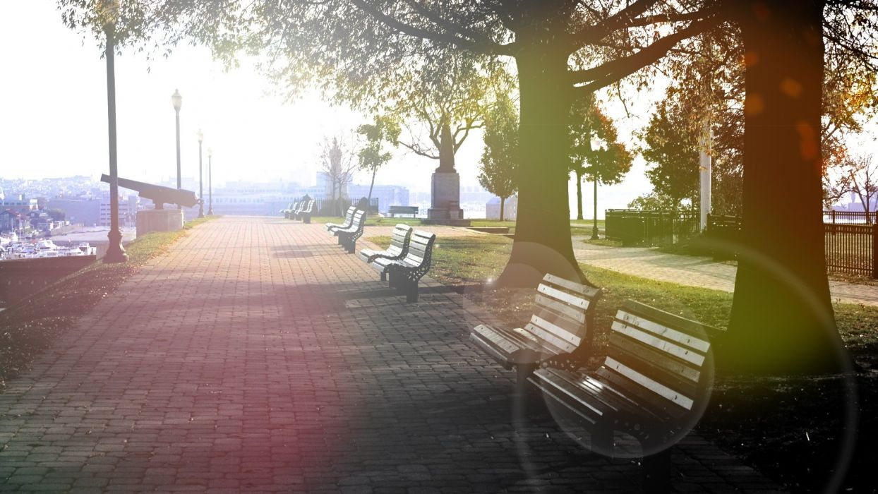 benches patches of light park trees light gun wallpaper