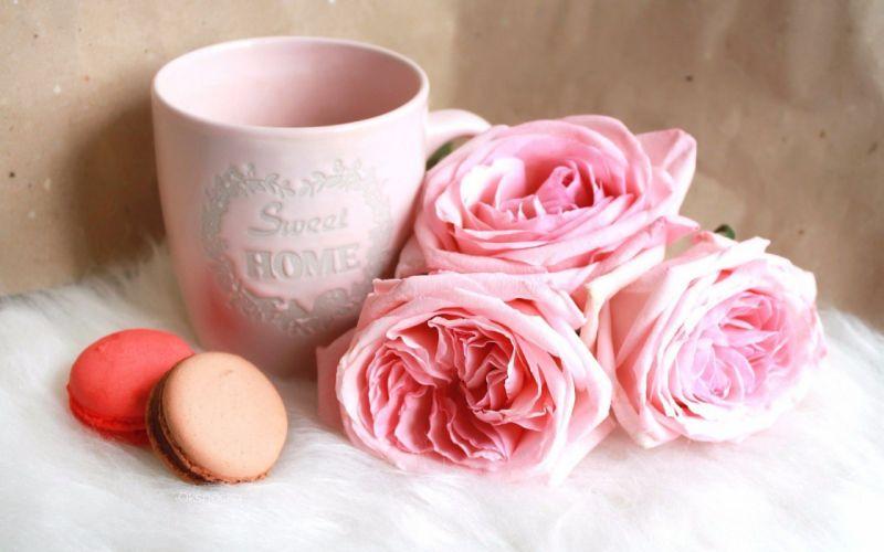 macaron cookies cup roses wallpaper