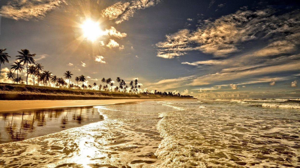playa agua olas palmeras naturaleza wallpaper