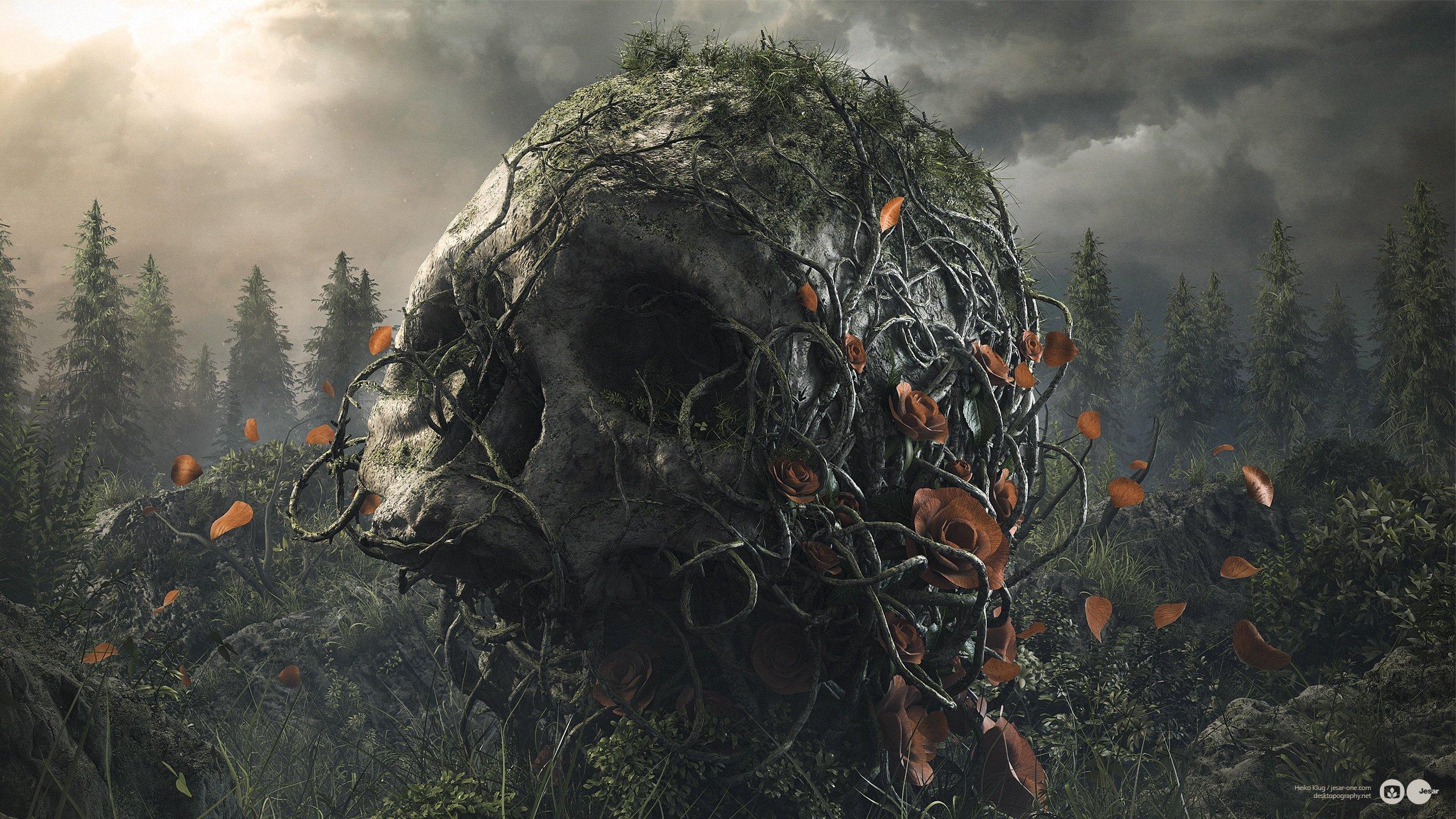Desktopography Digital Art Fantasy Beauty Skull Dark Wallpaper 2560x1440 952816 Wallpaperup