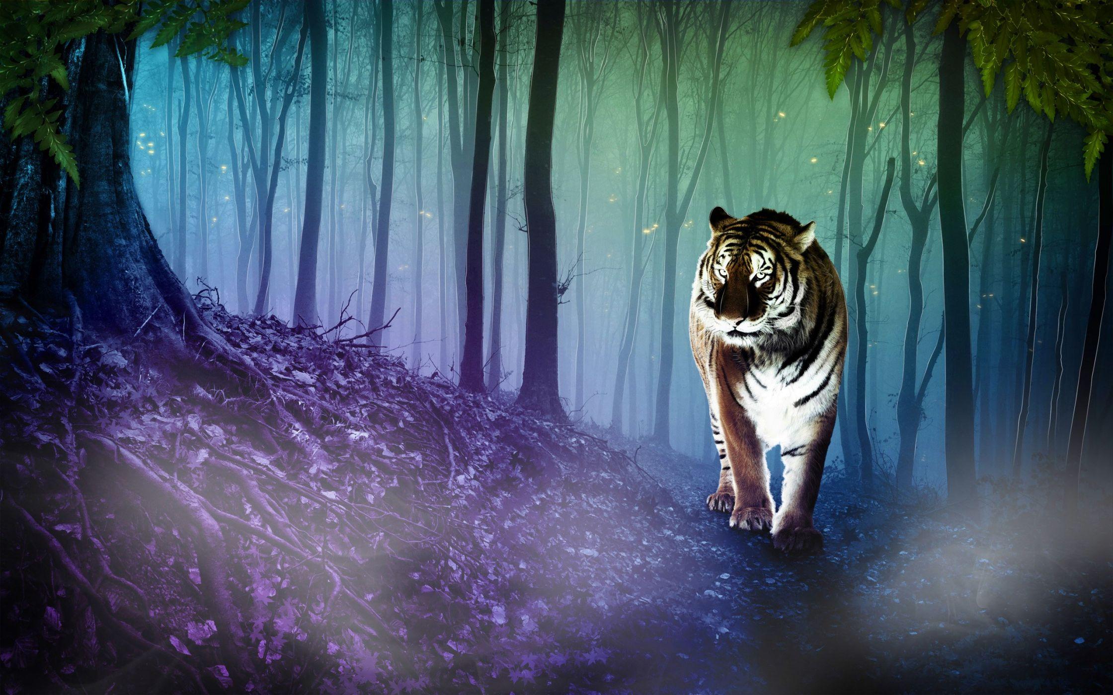 да, картинки на рабочий стол тигры волки протяжении всего периода