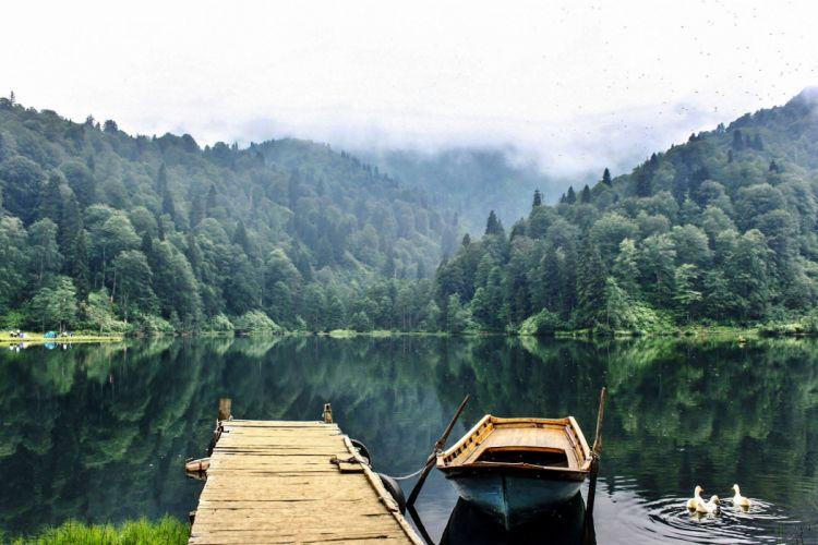Artvin Karagol lake forest landscape nature beauty amazing mountain sky wallpaper