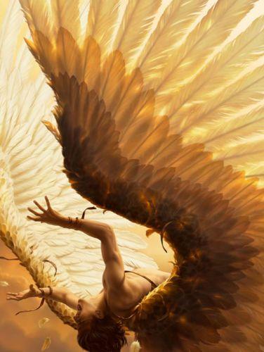 fantasy original male angel wings woman character wallpaper