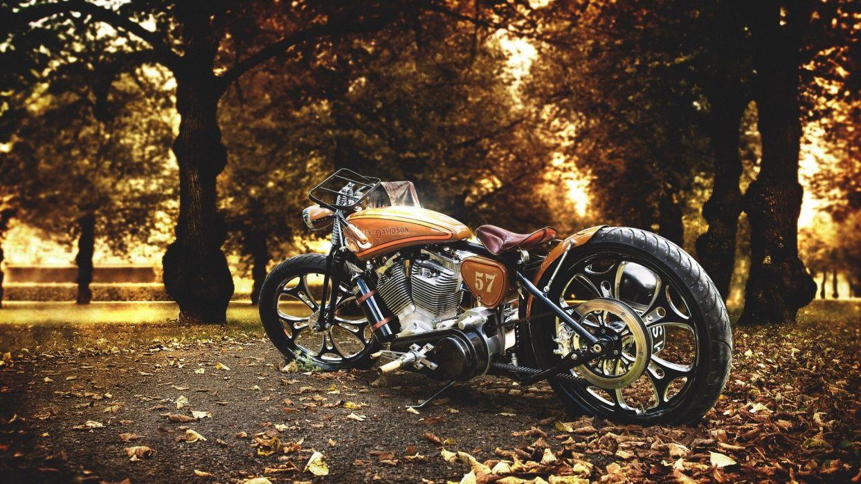 motorcycle free spirit trees autumn leaves wallpaper