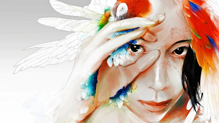color dragonfly drawing fantasy parrot art wallpaper