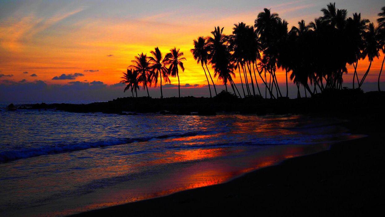 amanecer isla palmeras naturaleza playa wallpaper