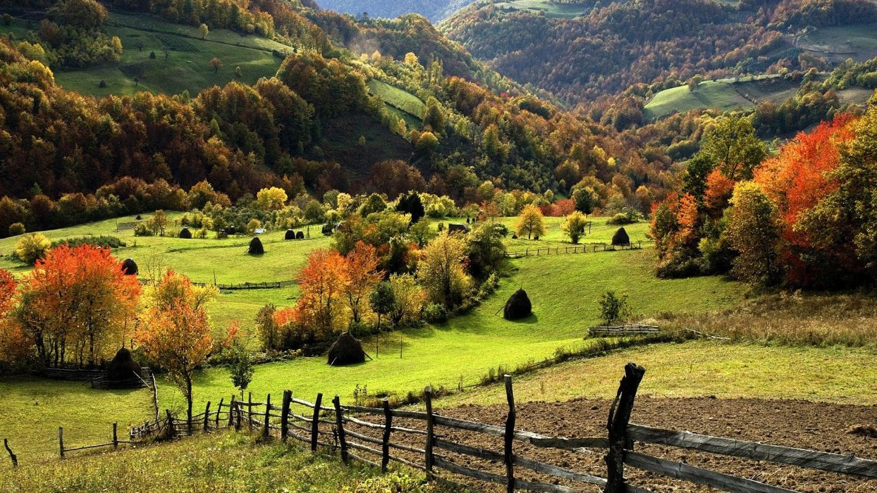 nature landscape trees forest mountain hill field grass fall fence wallpaper