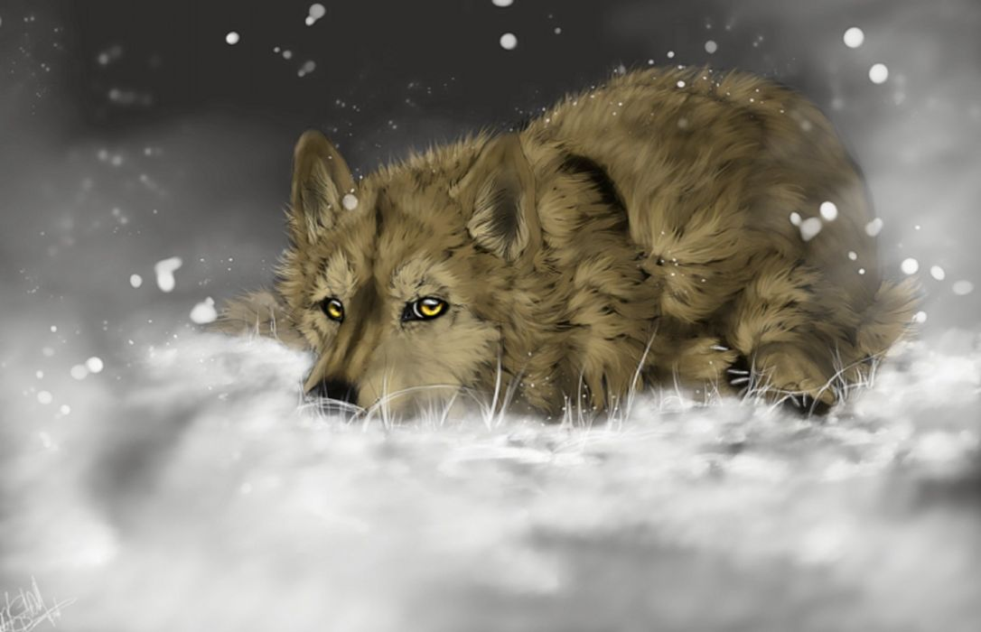painted animals painting snow wolves wolf wallpaper