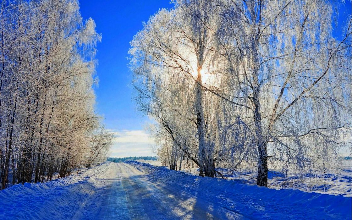 sunrise sunset winter sun road winter time trees nature Sun forest snow winter Snowy landscape wallpaper