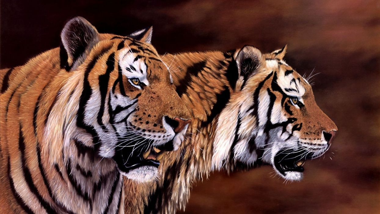 art jonathan truss Tigers animal beauty painting wallpaper