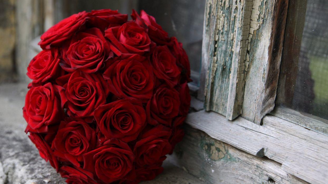 bouquet windowsill rose window red close-up crack wallpaper