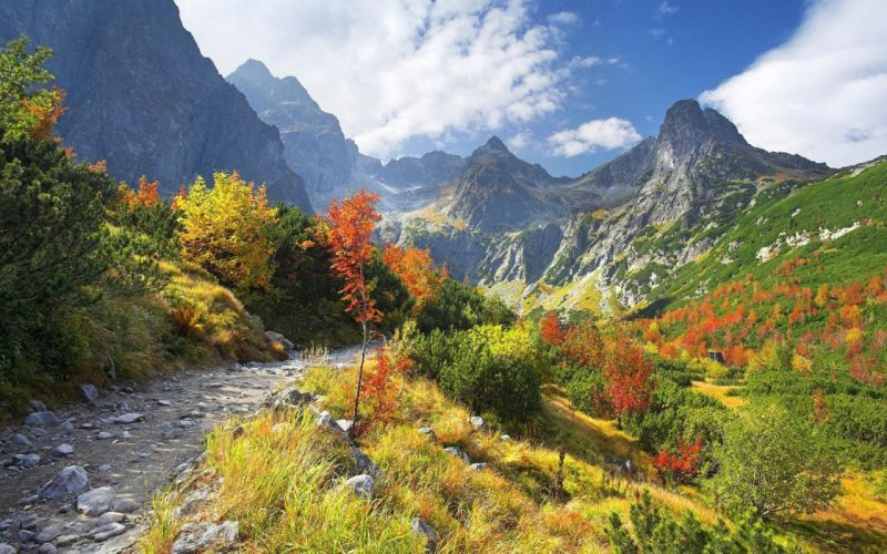 mountains vegetation road stones autumn wallpaper
