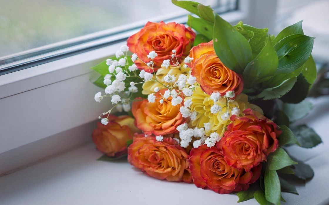 Roses Babys Breath Bouquet Windowsill Window Wallpaper 1920x1200 983911 Wallpaperup