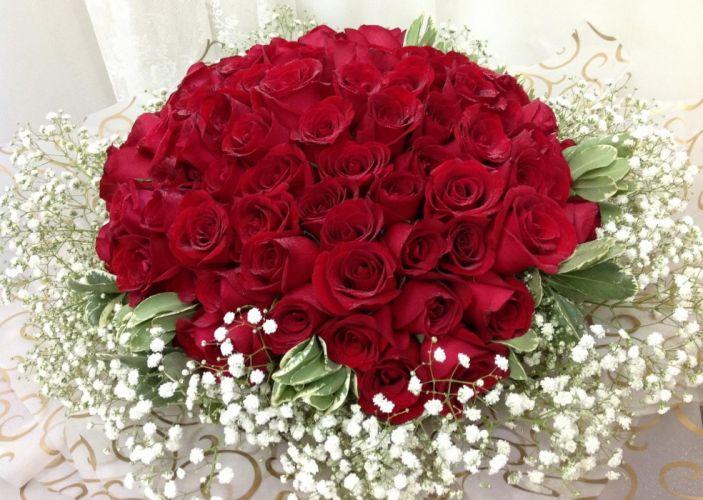 roses gypsophila bouquet decor wallpaper
