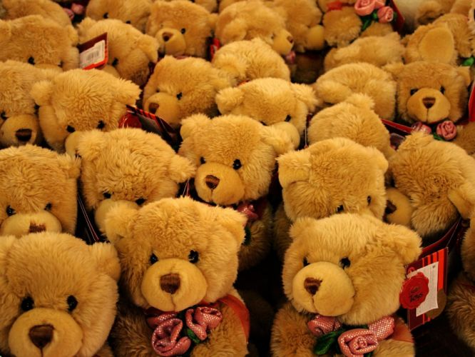 toys bears roses wallpaper