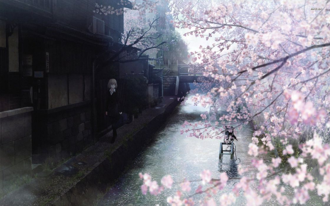 Anime Tree Sakura River Girl Wallpaper