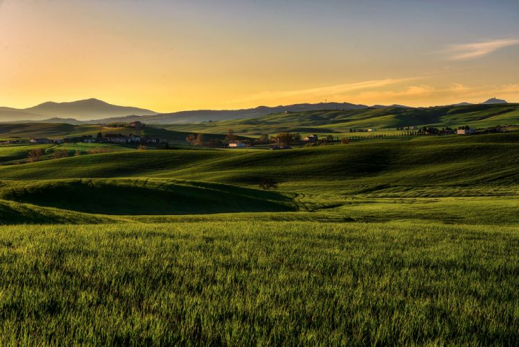 Italy Fields Grasslands Tuscany Nature wallpaper
