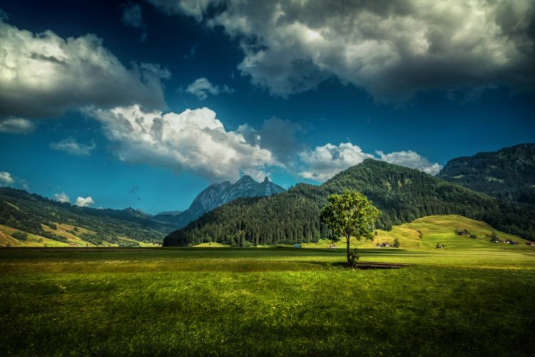 Switzerland Scenery Mountains Sky Forests Clouds Grass wallpaper