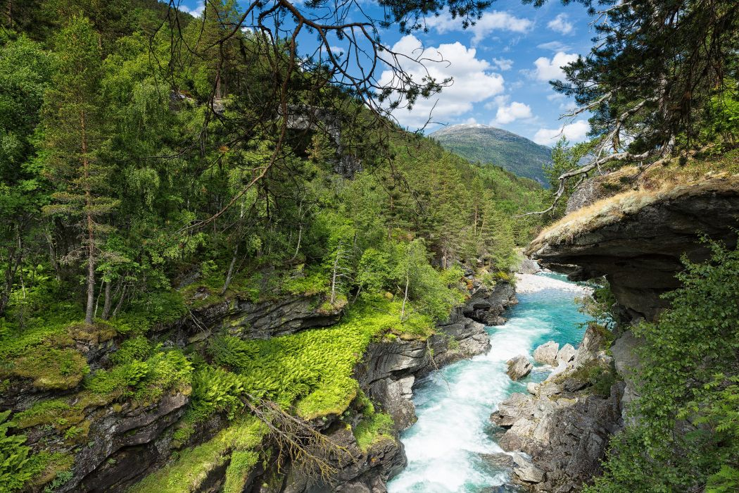 Norway Rivers Forests Crag Trees Carving a Canyon Slettafossen Nature wallpaper