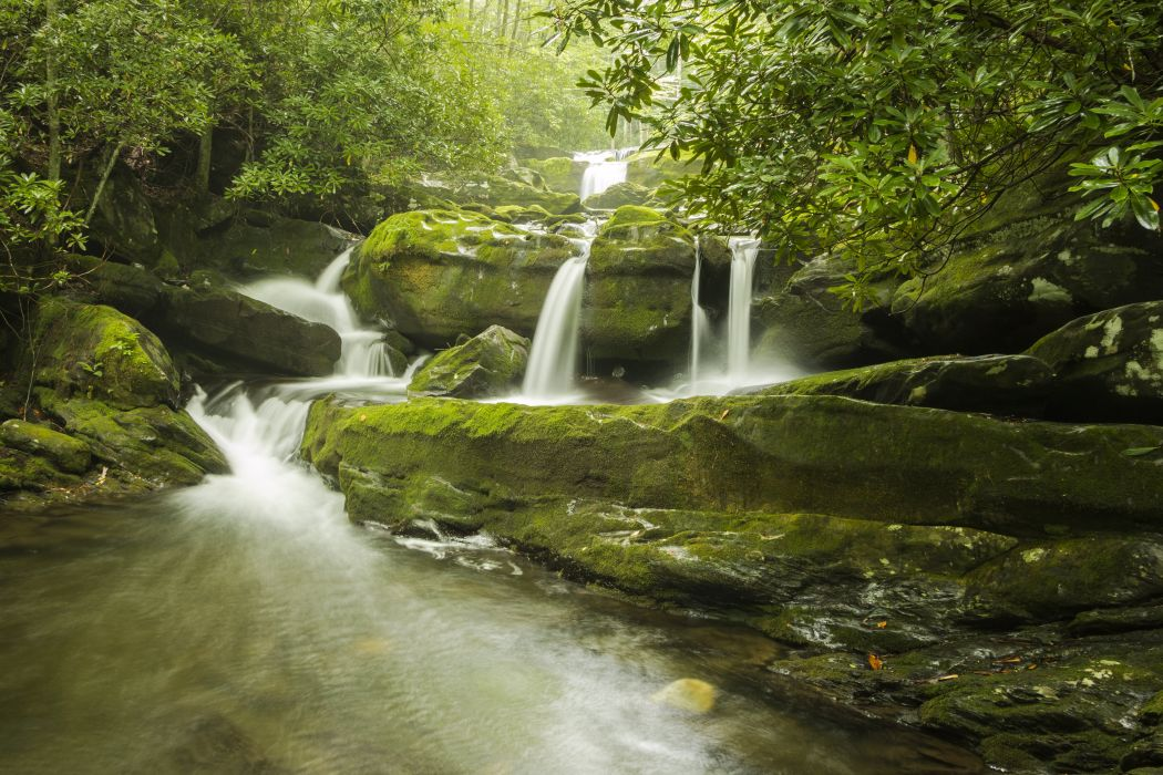 USA Parks Waterfalls Stones Moss Great Smoky Mountains National Park Nature wallpaper