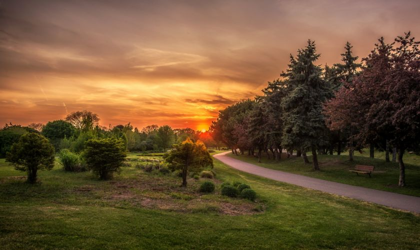 Canada Sunrises and sunsets Roads Trees Grass St Catharines Ontario Nature wallpaper
