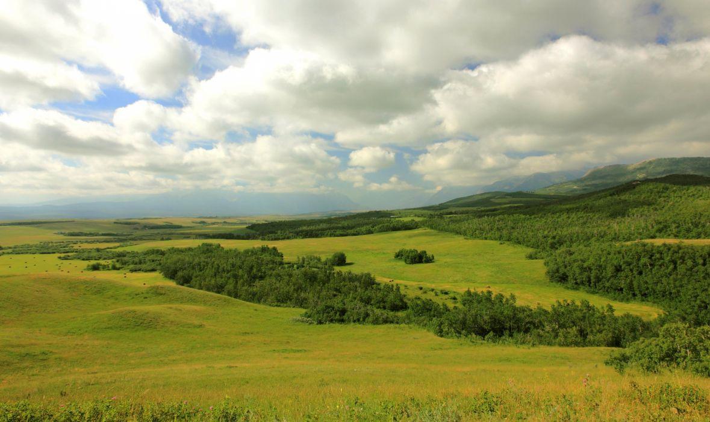 Canada Grasslands Sky Clouds Alberta Nature wallpaper