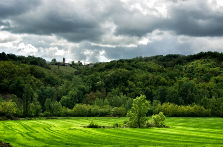 Italy Forests Grasslands Clouds Trees Lugagnano Val d'Arda Nature wallpaper