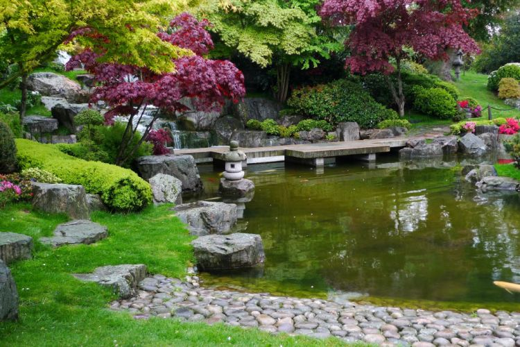 United Kingdom Parks Pond Stones London Trees Shrubs Holland Park Nature wallpaper