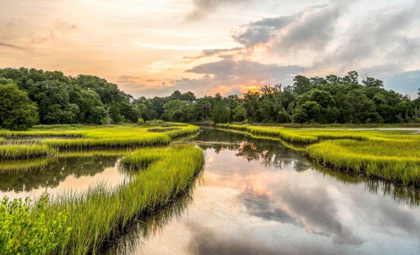 USA Rivers Grass Kiawah Island South Carolina Nature wallpaper