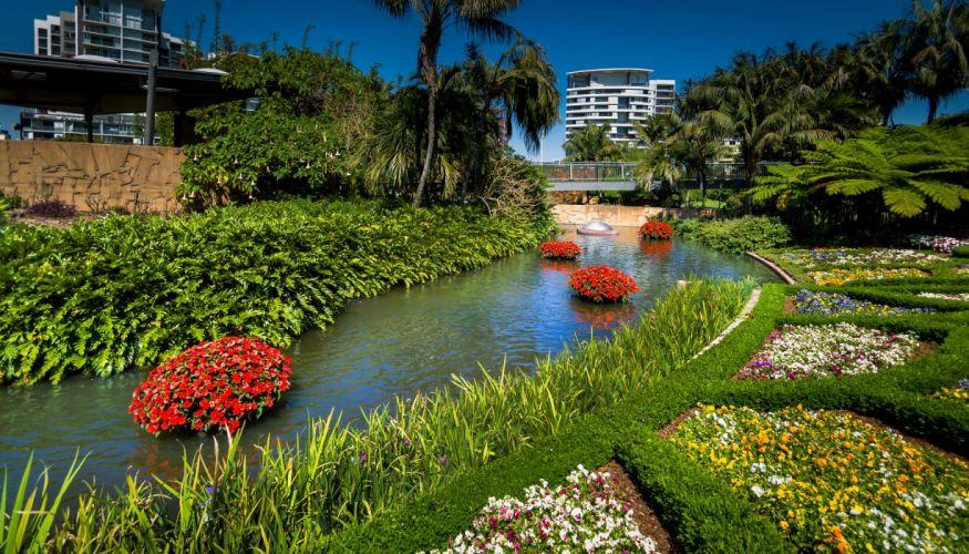 Australia Parks Rivers Petunia Pansies Brisbane Queensland Nature wallpaper