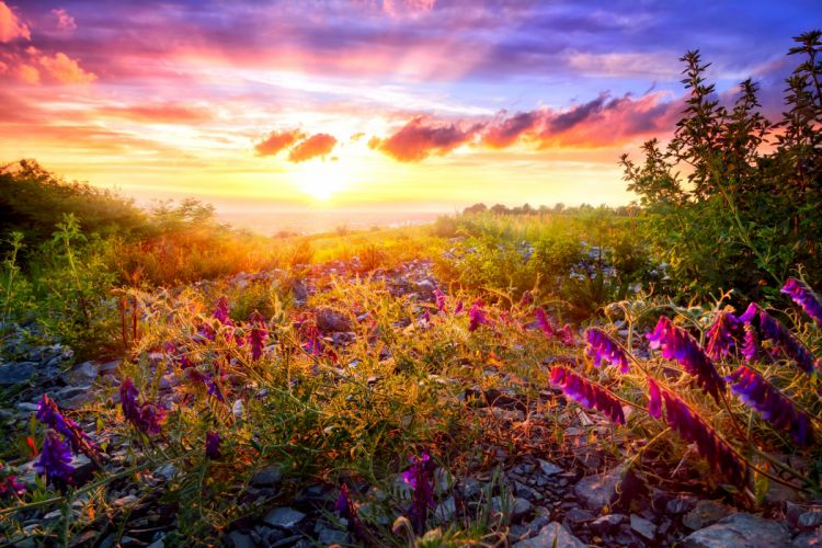 Scenery Sunrises and sunsets Sky Dicentra Clouds Nature wallpaper